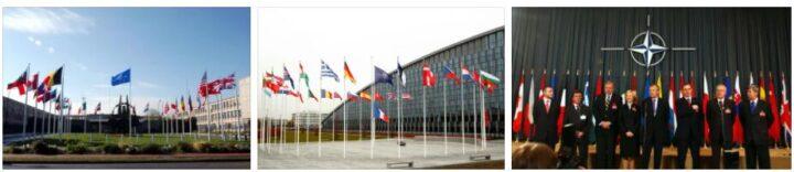 Comprehensive Guide to NATO